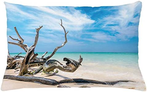 Amazon Com Ambesonne Driftwood Throw Pillow Cushion Cover Seascape Theme Branches On The Sandy Beach Of Cuba And The Sky Image Decorative Square Accent Pillow Case 20 X 20 Turquoise Sky Blue Home