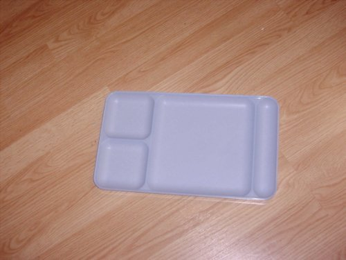 Tupperware Impressions Blue Divided Dining Tray