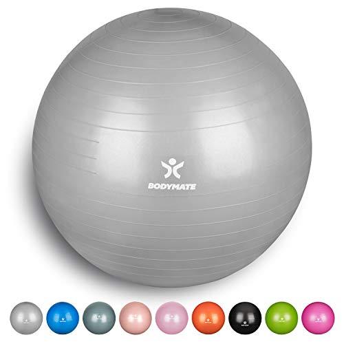 BODYMATE Ballon Fitness + Pompe Incluse + E-Book Gratuit Argent 65cm