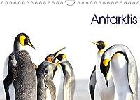 Antarktis - viaje.ch (Wandkalender 2022 DIN A4 quer): Landschaft und Tiere im ewigen Eis (Monatskalender, 14 Seiten )