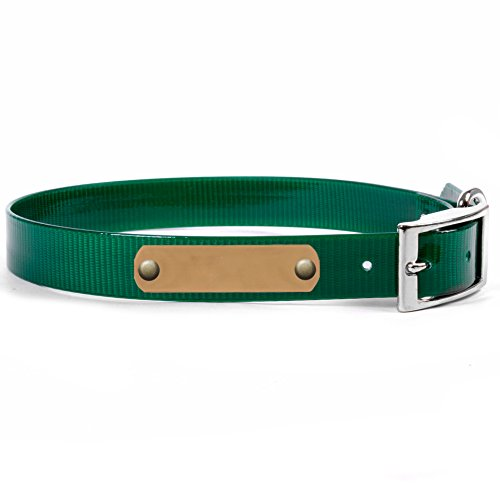 Personalized Waterproof Dog Collar with Name Plate for Large Dogs (Size #23) (Emerald Green, Brass Nameplate)