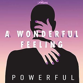 Wonderful Feeling - Single