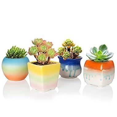 Solofish Succulent Plant Pot, Set of 4 Cute Rainbow Ceramic Pot Cactus Plant Pot Colorful Indoor Outdoor Garden Balcony Bucket Container Planter (Plants are Not Include) (Mini Size Pots Set)