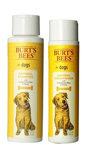 Burt's Bees For Dogs Dry Skin Shampoo & Conditioner Bundle: (1) Burt's Bees Oatmeal Shampoo With Colloidal Oat Flour & Honey (16 Oz.), and (1) Burt's Bees Oatmeal Conditioner With Colloidal Oat Flour & Honey (10 Oz.)