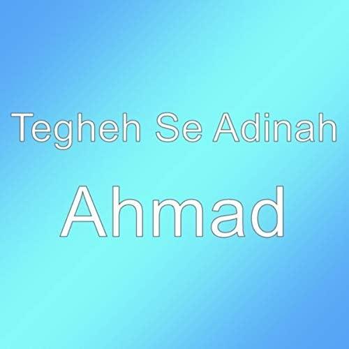 Tegheh Se Adinah