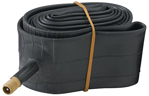 Diamondback 20x1.75/2.125 Schrader Valve Bicycle Tube, Black