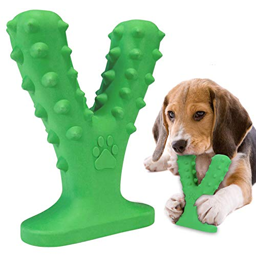 Petdexon Dog Toothbrush Chew Toys
