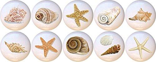 Set of 10 Artistic Seashells Conch Starfish Star Fish Sea Shell Decorative Ceramic Dresser Drawer Pulls Cabinet Cupboard Knobs