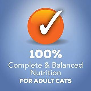 شراء Purina Friskies` Adult Wet Cat Food Variety Pack