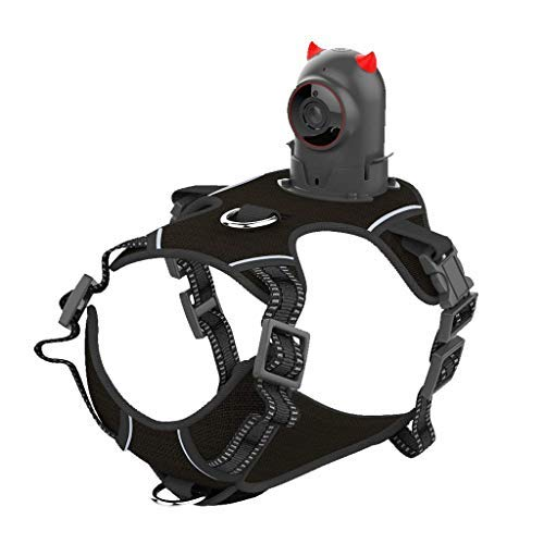Koojawind Videocamera per Animali Domestici Videocamera per Sport da Compagnia Videocassetta per Cani Cinturino per Cani Cat Video Cinturino per Petto