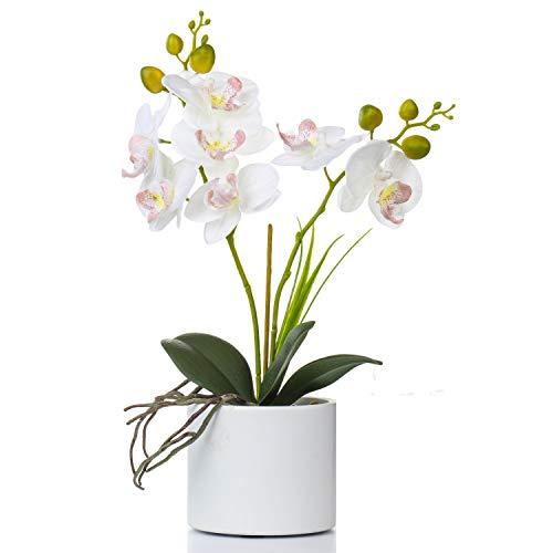 jarrón flores fabricante Jusdreen