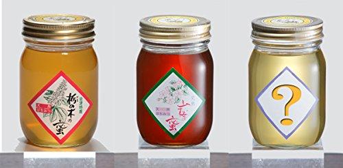 【ハニー松本】会津産天然蜂蜜 500g 3個セット 「栃の木」「2個おまかせ」
