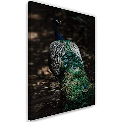 Feeby Photo sur Toile XXL Paon Art Image Déco Oiseau Animal Nature Vert 80x120 cm