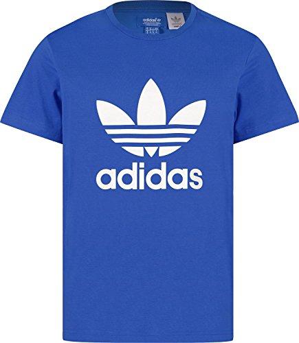 adidas Herren T-Shirt Trefoil, Blue Bird, M, G84555