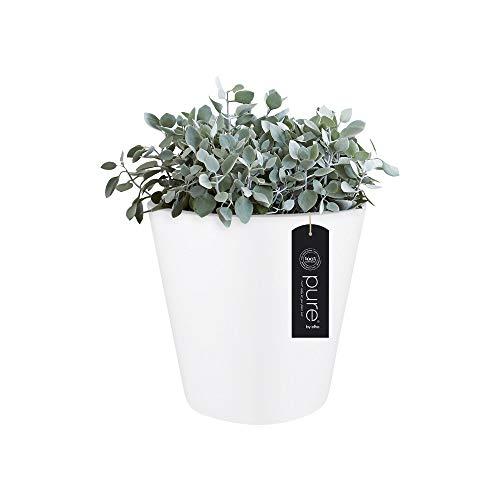 elho pure Straight Round 50 Pflanzentopf – Runder Blumentopf in Weiß – Moderne Dekoration für den Innen- und Außenbereich – Ø 50 x H 51 cm