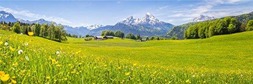 Landschaft Gebirge Blumen XXL Panorama Wandtattoo Bild Poster Aufkleber W0065 Größe 300 cm x 100 cm