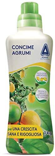 adama CONCIME NUTRIMENTO AGRUMI 1 kg Limoni Arancia Mandarino Pompelmo Cedro