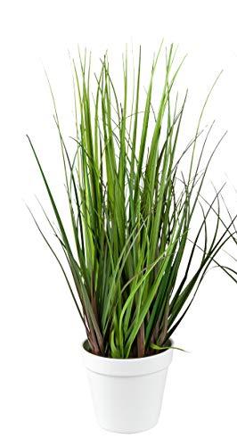 dekojohnson Künstliches Ziergras Kunstgras in weißem Topf Deko-Pflanze naturgetreue Kunst-Pflanze Grasbusch Grünpflanze Ufergras grün 60cm hoch