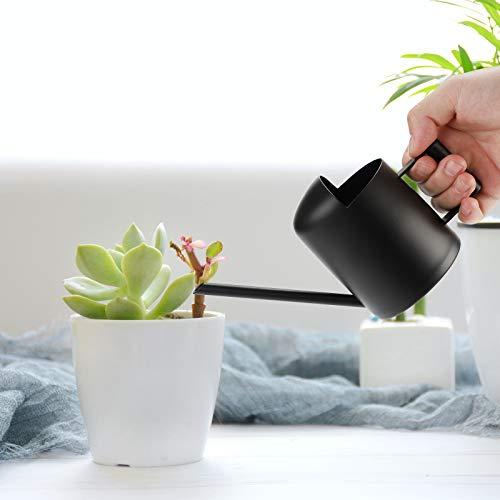Danolt Gießkanne Edelstahl Bewässerung 300ml Bonsai Gießkanne Metall Langen Gießkanne für Innen draußen Pflanzengießkanne Home Büro