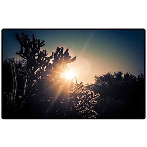 Entryway Rug Sunrise Over The Desert Scottsdale Arizona USA Area Rug for Home Decor Bedroom Garden