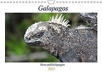 Galapagos 2022 - Tiere auf Galapagos (Wandkalender 2022 DIN A4 quer): Die einzigartige Tierwelt auf Galapagos (Geburtstagskalender, 14 Seiten )
