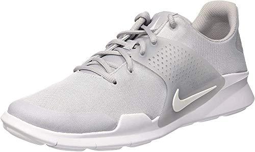 Nike Herren Arrowz Laufschuhe, Grau (Wolf Grey/White 001), 45.5 EU