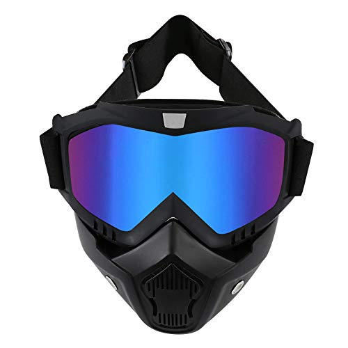 LJDJ Motorcycle Goggles with Remova…