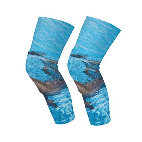 Ahomy 1 Paar Kniebandage für Männer und Frauen, Delfin, Schwimmen, Blaues Wasser, Tropisches Meer, Kompressionsbandage für Laufen, Fußball, Sport