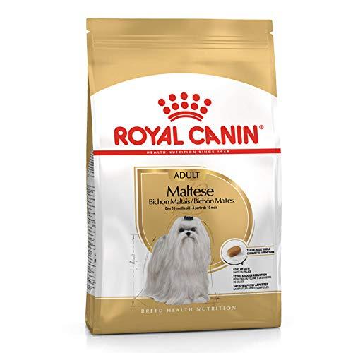 Royal Canin Hunde-Trockenfutter Adult Maltese für ausgewachsene Malteser, 24 % Proteingehalt, 1,5 kg