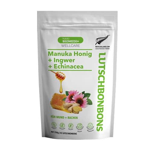 Purao Biomedi+ Manuka Honig Bonbons mit Manuka Honig + Ingwer + Echinacea - wohltuend für Mund und Hals, 42 Manuka-Ingwer-Echinacea Bonbons (250 g) im wiederverschließbaren ZIP Beutel