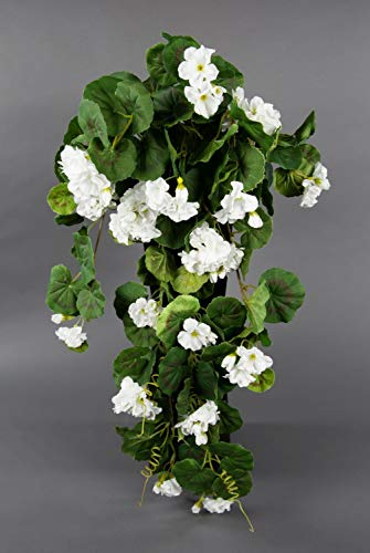 Seidenblumen Roß Geranienhänger 70cm weiß ZF (Modell 2018) Kunstpflanzen künstliche Geranie Kunstblumen Hängegeranie
