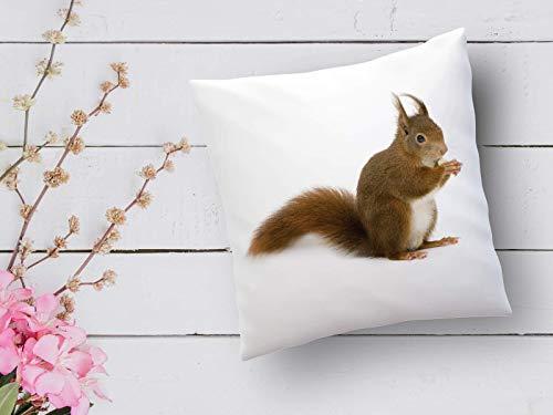 Kissen mit Print Eichhörnchen Landhausstil