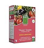 BHS EVTO750 Engrais Longue Durée Vitamin 750 g | Soit 125 Plants | Équilibre...