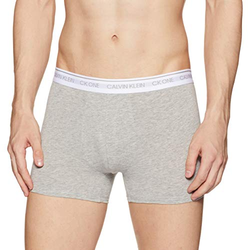 Calvin Klein Men's Solid Trunks (NB2216080S_Grey Heather W/Wh Wb_Small)