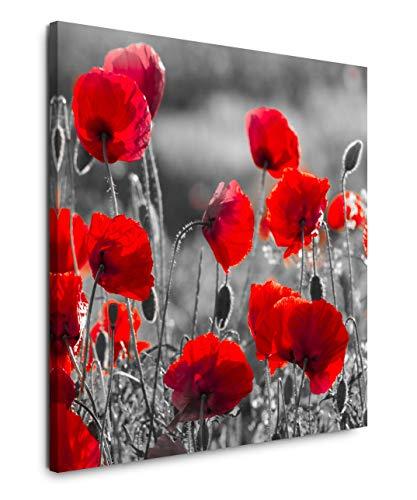 EAUZONE GmbH Rote Mohnblumen im Feld 60x60cm Wandbild auf Leinwand, Kunstdruck Moderne Bilder