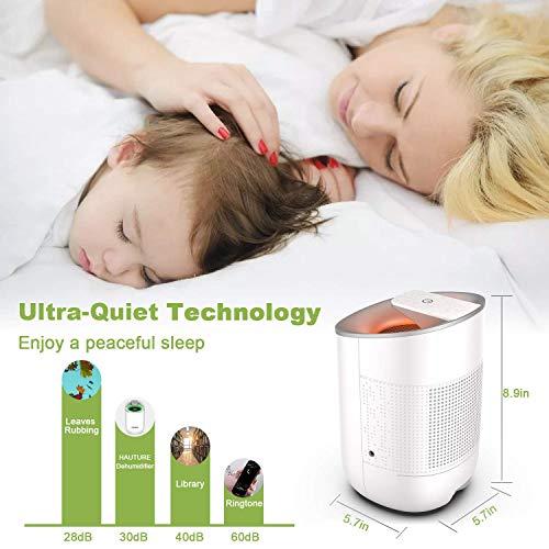 Product Image 4: Electric Mini Dehumidifier, 1500 Cubic Feet (170 sq ft)