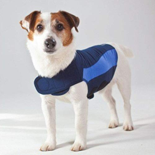 Thundershirt, Polo per Cani