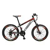 Marky 24 Geschwindigkeiten Scheibenbremsen Fat Bike 22 Zoll Reifen Fahrrad-Low-Span männliche und weibliche Disc Off-Road