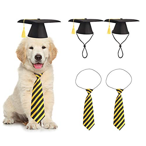 4 Pieces Pet Graduation Caps with Neck Tie Dogs Cats Graduation Hats for Small Medium Pet Costume Accessory Photography Props Black Gold