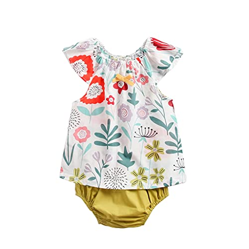 Ropa Bebe Niña Verano Recién Nacido Bebé Mono de Flores 0 a 24 Meses Recien Nacido Bebe Niño Ropa de Conjunto/2PC