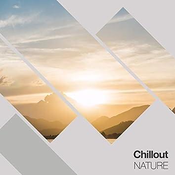 # 1 Album: Chillout Nature