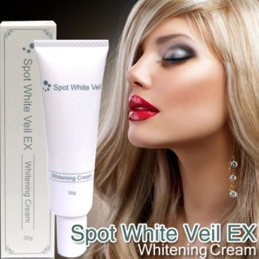 大西洋カウントアップクロニクルSpot White Veil EX ~スポットホワイトヴェールEX~
