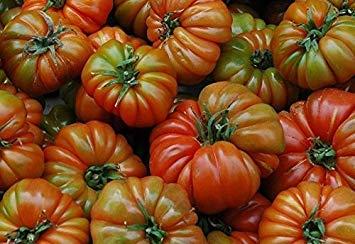 VISA STORE 10 semillas de tomate RAF variedad Ta Grande, de tomate de la herencia española, Andusia, España