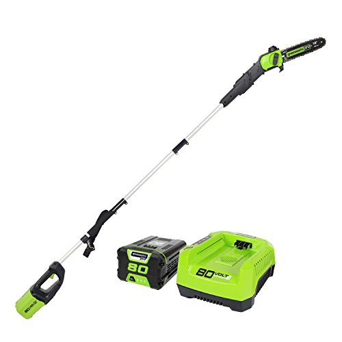 Greenworks Pro 80V 10 inch Brushless Cordless Polesaw, 2Ah Battery and Charger Included PS80L210