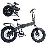 0℃ Outdoor Bicicleta Eléctrica para Ciudad de 350 W, Batería Extraíble de 48V 10AH, Bicicleta Eléctrica Plegable, 25KM/H, Aleación de Aluminio para Vehículos de Ciclismo de Montaña al Aire Libre