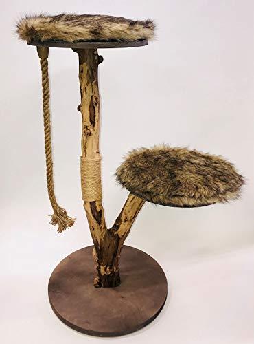 BUSDUGA Katzen Kratzbaum Natur - Echtholz, 3 Größen zur Wahl (MITTEL)