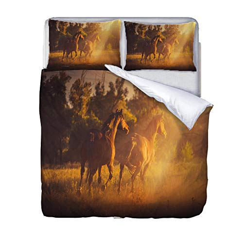BSZHCT Duvet Cover Set Single bed Size Sunny brown animal horse Printed Bedding Set 100% Hypoallergenic Microfiber Quilt Cover and 2 Pillowcases Duvet Set Gift for Teens Girls boy adult