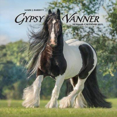 BUY 1 2021 GYPSY VANNER HORSES CALENDAR AND GET 1 FREE YEAR PLANNERS (THIRTEEN DOLLAR VALUE)- YOU CAN ALSO ORDER A CALENDAR PLANNER 2019-20 Arizona