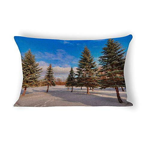 happygoluck1y - Fundas de cojín rectangulares de 30 x 50 cm, diseño de nubes transparentes y árboles de bosque nevados de invierno, 30 x 50 cm, fundas de almohada decorativas de algodón y lino para sofá