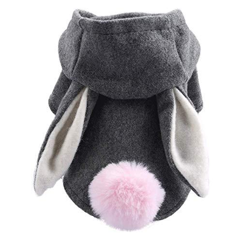GBY Huisdier kleding, hond kleding, kleine hond eenvoudige jas, huisdier hond kat kleding, herfst en winter Teddy beer, grijs konijn korte jas, warme wollen kleding, X-Large, Kleur